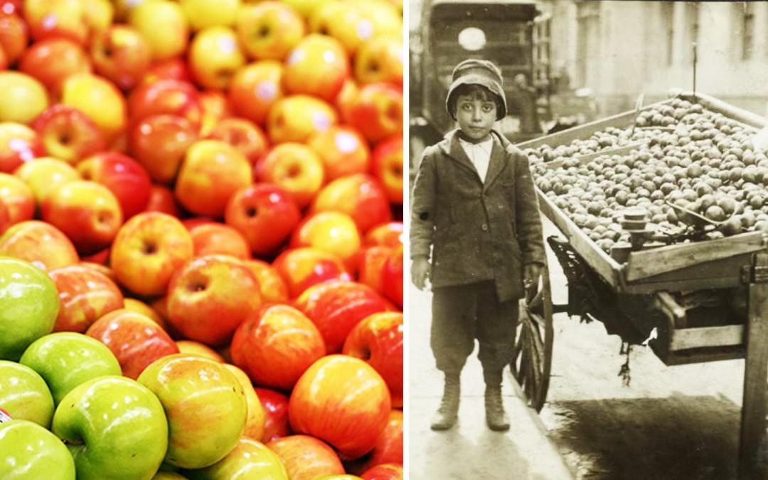 Manger 1 pomme en 1950 revient à manger plus de 100 pommes en 2016