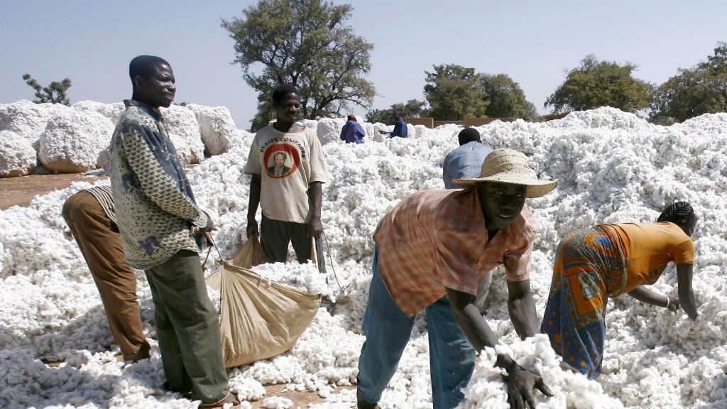 des-paysans-burkinabes-entassent-le-coton-dans-des-sacs-a-pama-au-centre-du-burkina-faso-le-22-avril-2007_5580121