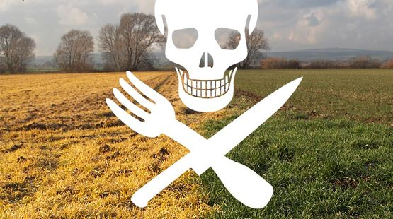 aktion-monsanto-roundup-glyphosat