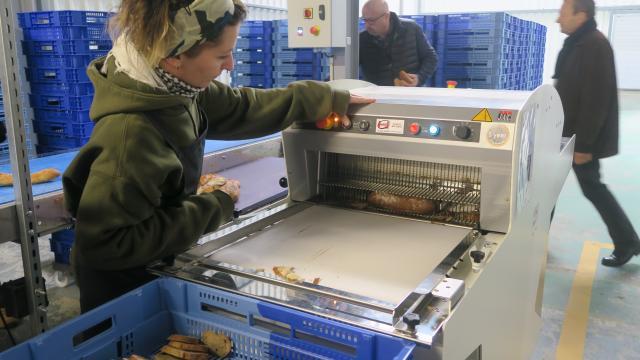 agri-pain-transforme-le-pain-perdu-en-emplois-colombelles