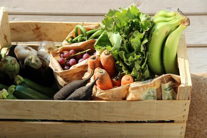 panier-legumes-epicier-bio-adour