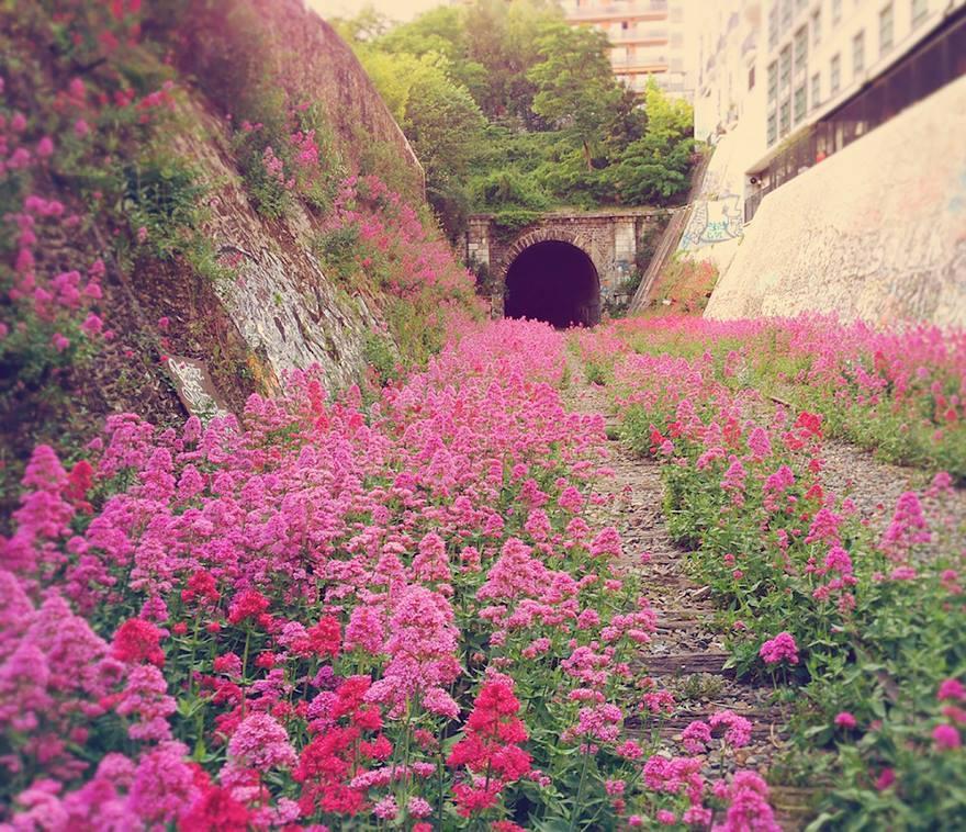 chemin-de-fer-abandonné-paris